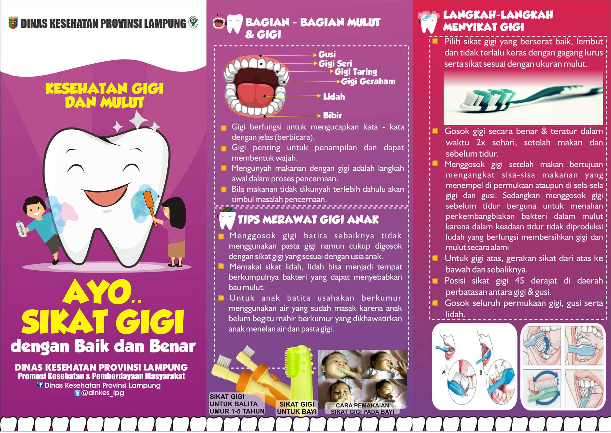 Leaflet Kesehatan Gigi Mulut Dinas Kesehatan Provinsi Lampung