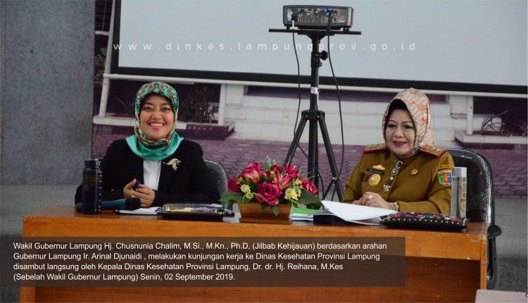 Kunjungan Kerja Wakil Gubernur Lampung ke Dinas Kesehatan Provinsi Lampung