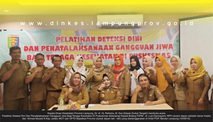 Gelar Pelatihan Deteksi Dini dan  Gangguan Jiwa, Dinkes Lampung upgrade Nakes Puskemas