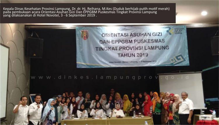 Dinkes Lampung terus Sosialisasikan Asuhan Gizi dan E-PPGBM Puskesmas