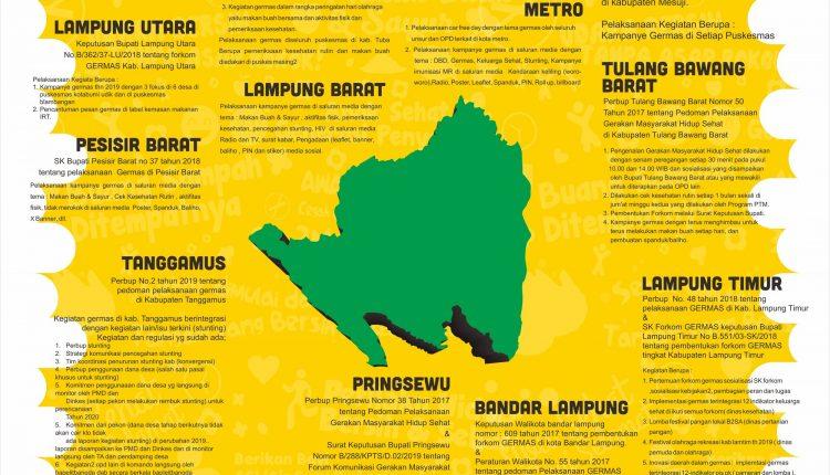 Pelaksanaan Germas di Kabupaten/Kota Provinsi Lampung